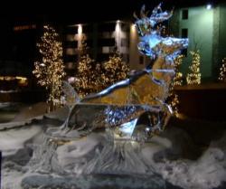 deer 10 blocks.JPG
