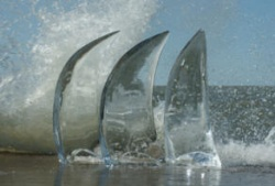 3 sails 3.jpg