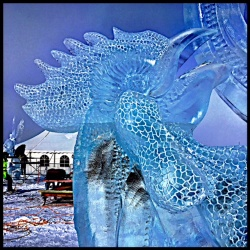 summer sunrise rooster ice carving 10.jpg